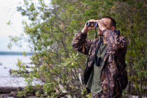 Essentials For Your Moose Hunting Trip
