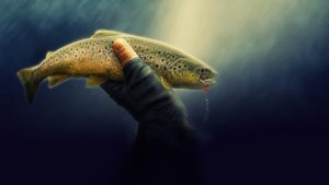 hand holding fish under water